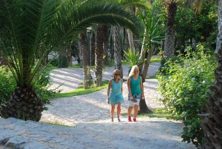 Den største palmsskogen i Europa. 400.000 palmer i Elche.