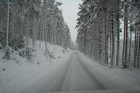 Vintervegen